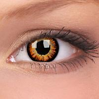 fx contact lenses golden twiglight