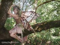 Froud faery wings