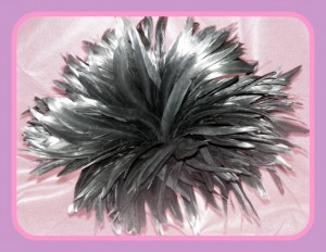 glossy black feathers