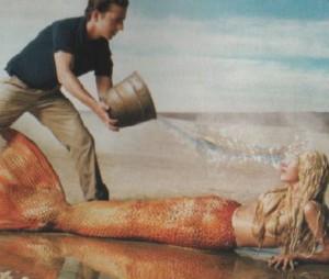 mermaid fin rental
